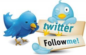Comment augmenter votre nombre de followers et comment bien utiliser Twitter